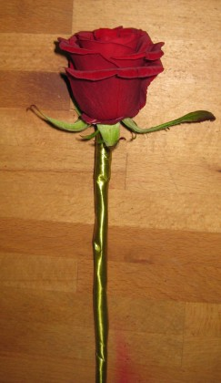 Wand with Red Rose