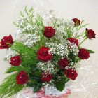 12 Red Rose Aquabox